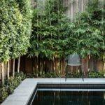 Poolside Fencing and Hedge