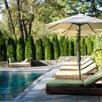 Poolside Privacy Hedge