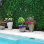 Poolside Potted Planters with Colorful Plants